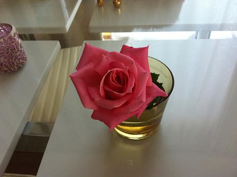バラの花輪がどんどん大きくなっていく_f0186787_17462465.jpg