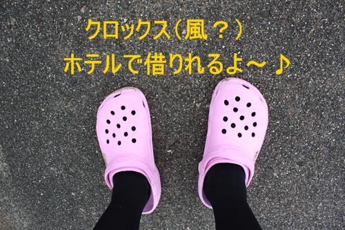 d0165124_166553.jpg