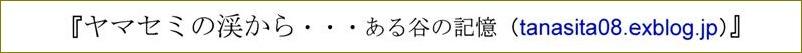 『 金子みすゞ絵葉書 その2 』 _f0159856_6152722.jpg