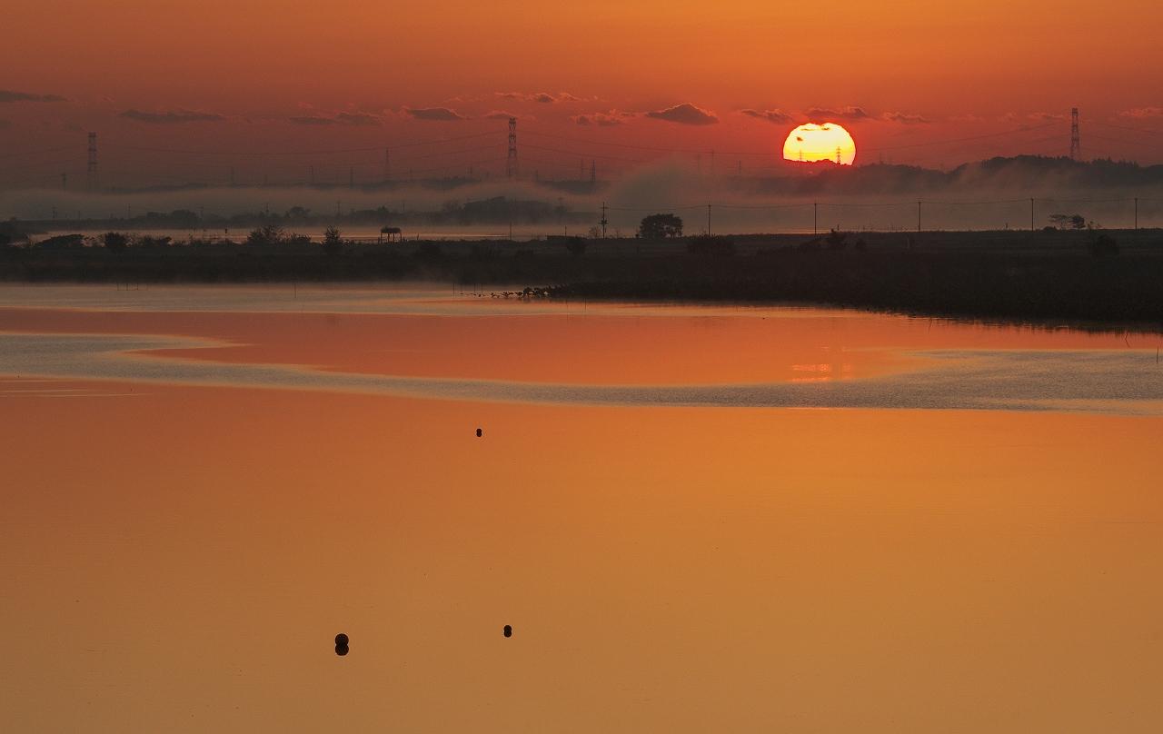 沼の夜明け 3_f0018464_2043065.jpg