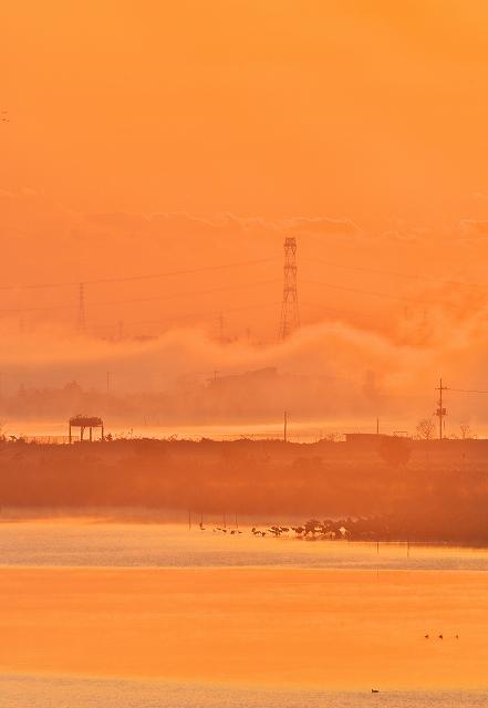沼の夜明け 3_f0018464_2050548.jpg