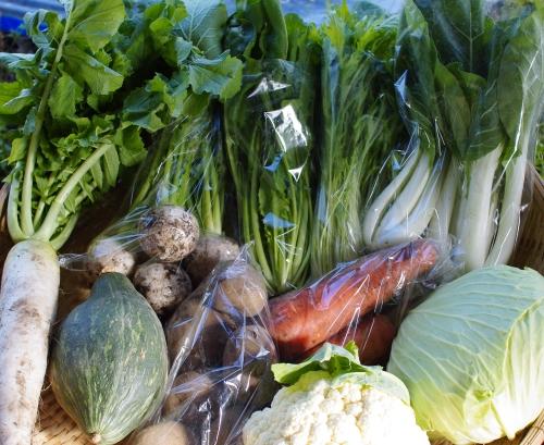 今週の野菜セット(11/1~11/5着)_c0110869_1635614.jpg