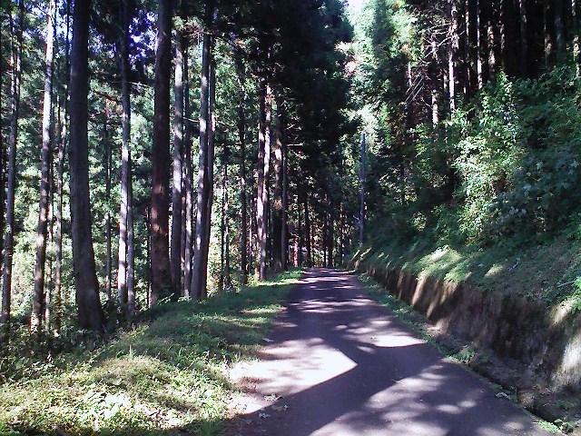 2011/10/28 土俵岳_d0233770_19232654.jpg