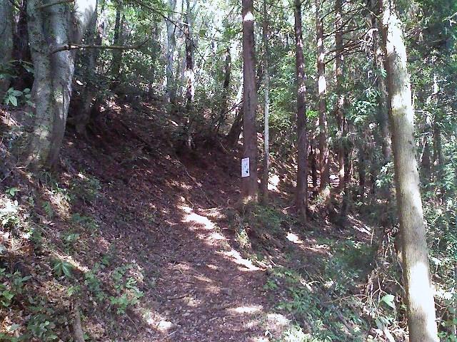 2011/10/28 土俵岳_d0233770_1926590.jpg