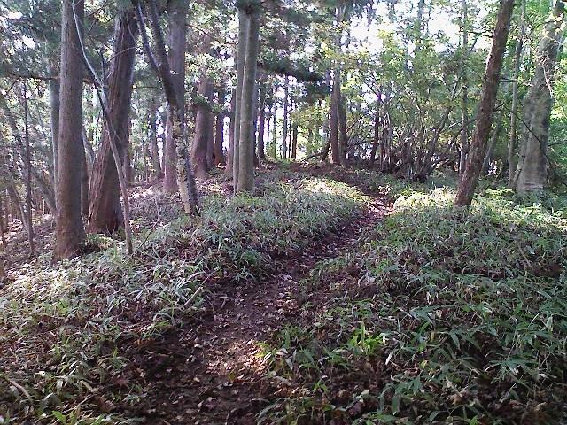 2011/10/28 土俵岳_d0233770_19411356.jpg