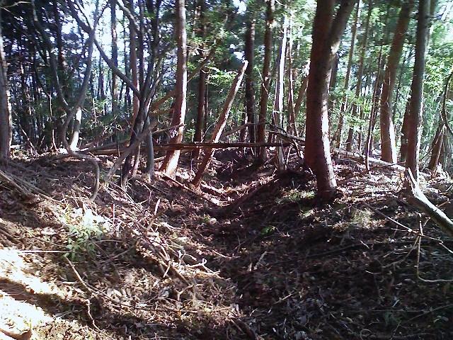 2011/10/28 土俵岳_d0233770_19584483.jpg