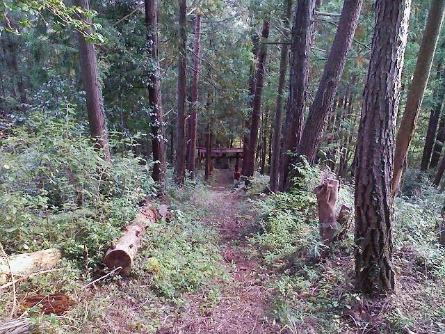 2011/10/28 土俵岳_d0233770_2022545.jpg