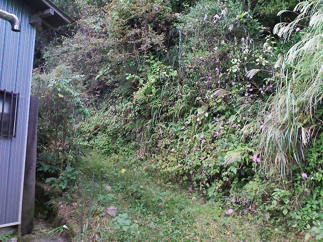 2011/10/28 土俵岳_d0233770_2024411.jpg