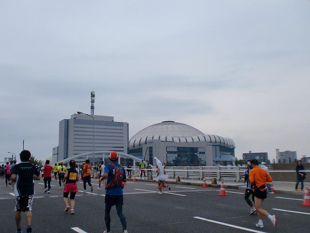 第一回 大阪マラソン 10月30日(日) RUN:42.195km_b0176192_21343150.jpg