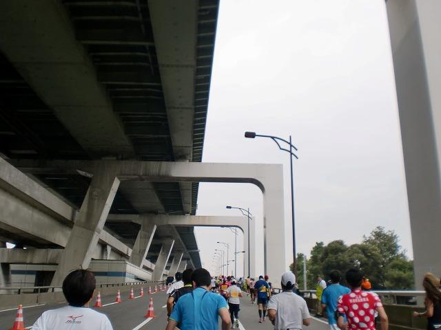 第一回 大阪マラソン 10月30日(日) RUN:42.195km_b0176192_22594731.jpg