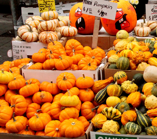 ニューヨークのハロウィン風景 かぼちゃいっぱい青空市場_b0007805_23384732.jpg