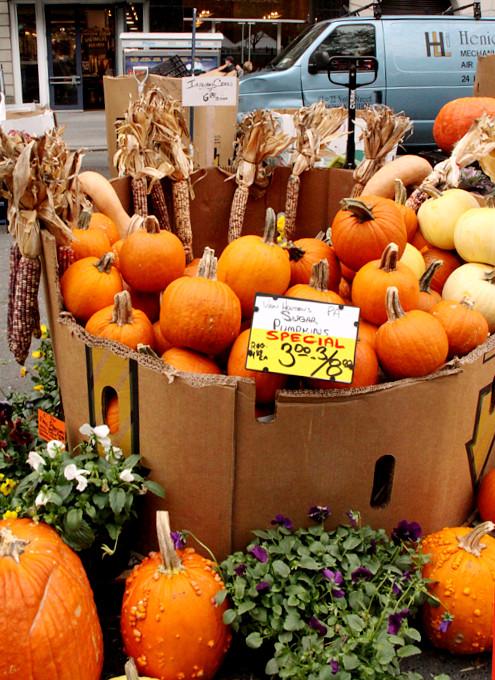 ニューヨークのハロウィン風景 かぼちゃいっぱい青空市場_b0007805_234002.jpg