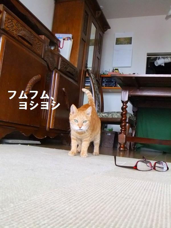 a0147921_20102526.jpg