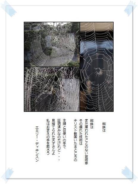 蜘蛛は・・・_c0026824_1020975.jpg