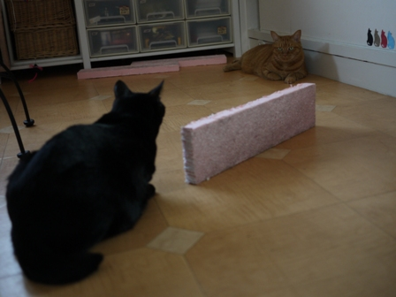 立ってるピンクのつめとぎ猫 空しぇるのぇるろった編。_a0143140_21512365.jpg