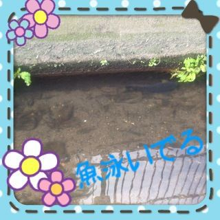 a0075841_0421851.jpg