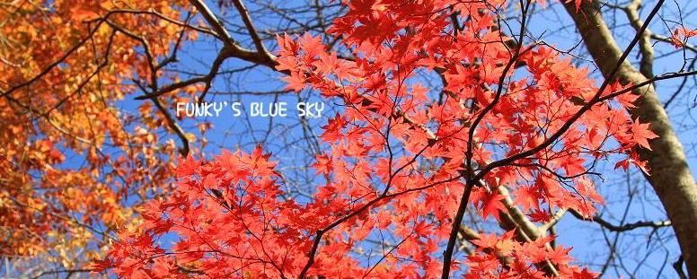 変わりやすい秋空の下で・・ ♪_c0145250_2094746.jpg
