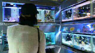 フラワーセンター_d0178587_143449100.jpg