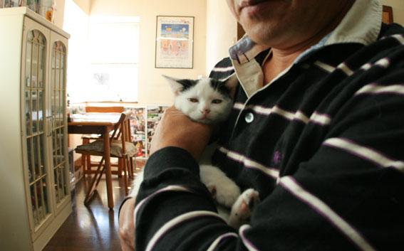 子猫部屋開放_d0071596_22364425.jpg
