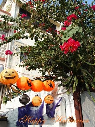 Happy Halloween_d0088196_10555629.jpg