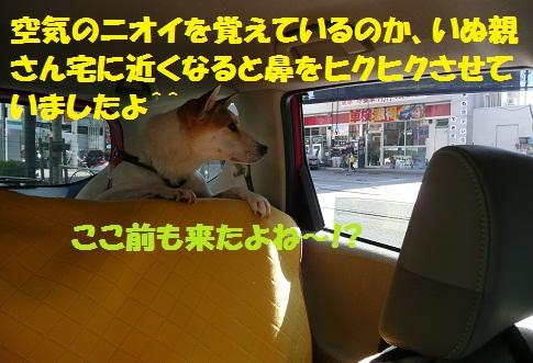 f0121712_161461.jpg