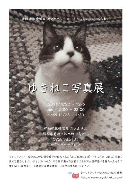 『ゆきねこ写真展』開催のお知らせ。_a0143140_22481616.jpg