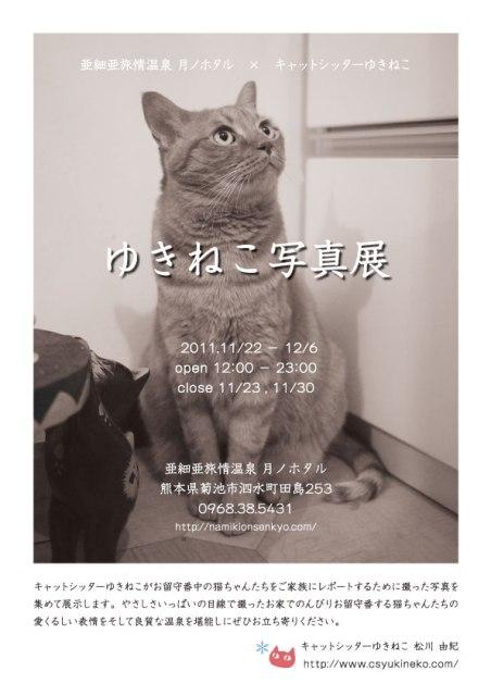 『ゆきねこ写真展』開催のお知らせ。_a0143140_2249245.jpg