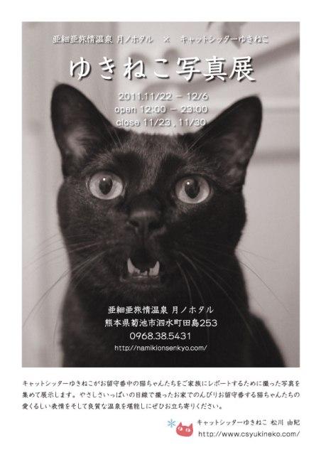 『ゆきねこ写真展』開催のお知らせ。_a0143140_22493736.jpg