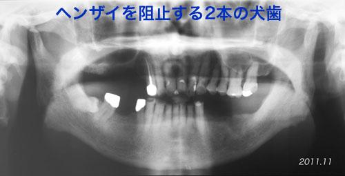 f0103459_15104786.jpg