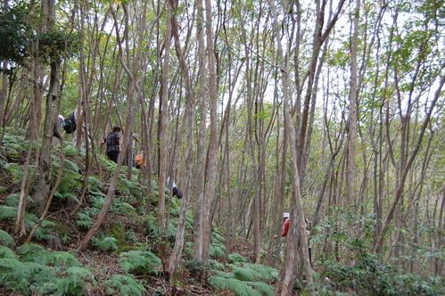 H23年11月度「大人の林間学校」_c0108460_2313867.jpg