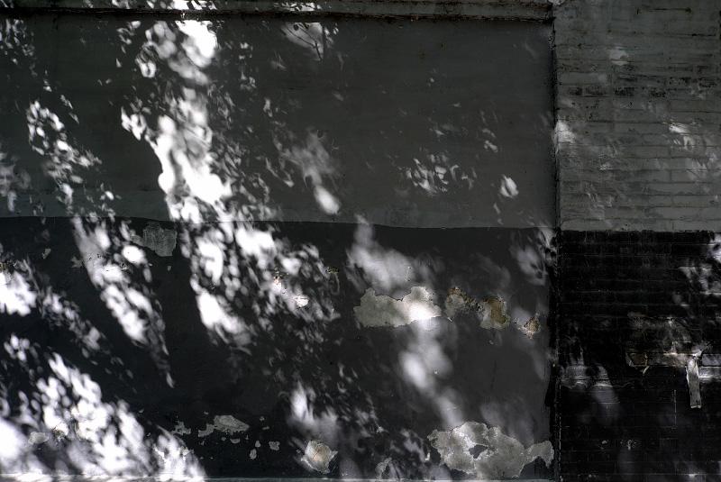 f0231169_2105558.jpg