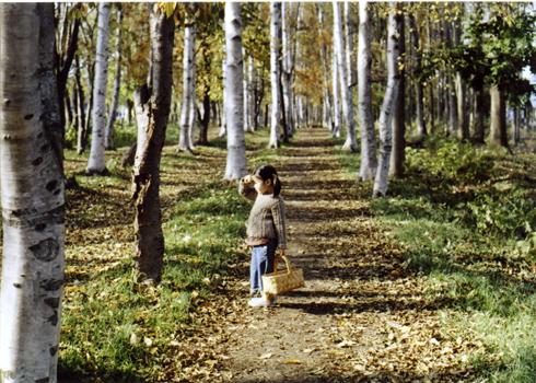秋の森の中で_e0059605_17155326.jpg