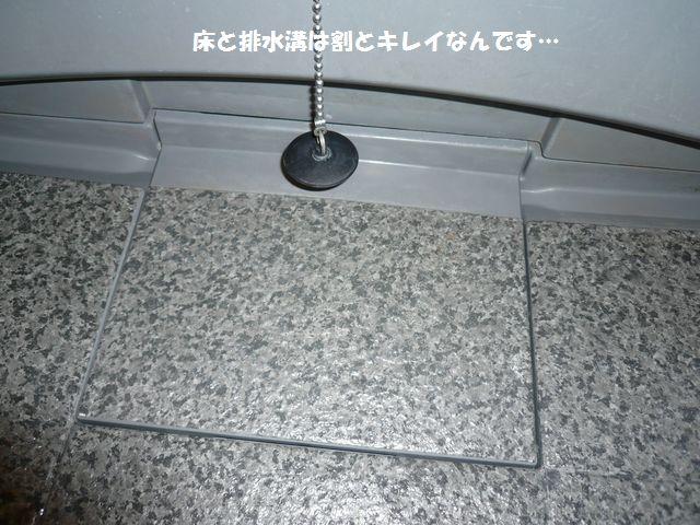 e0094407_18494080.jpg