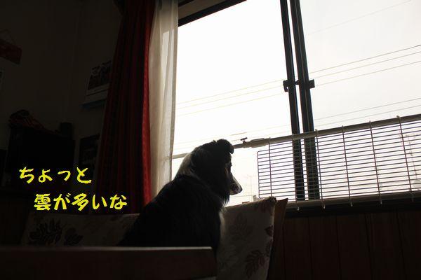 d0224111_1041922.jpg