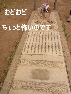 f0214121_22531966.jpg