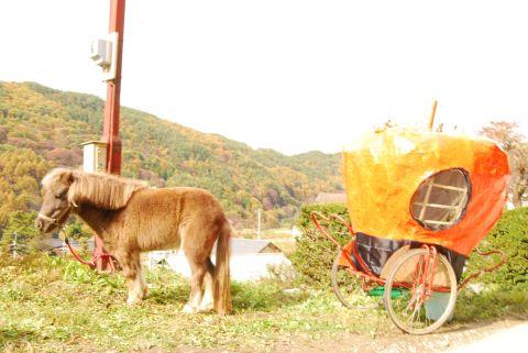 地域、三義の文化祭♪_e0015223_15171396.jpg
