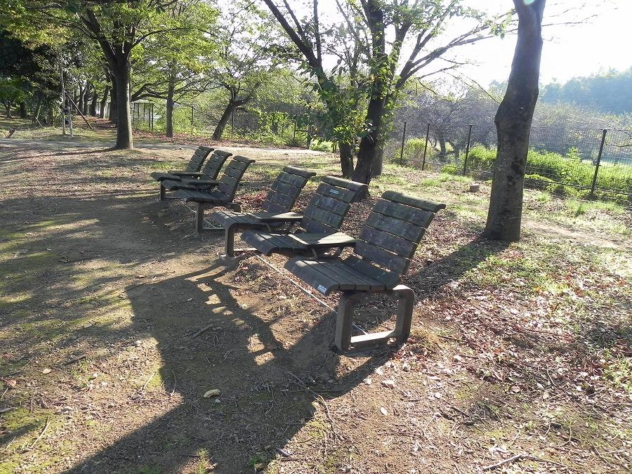 花の丘公園の花々_c0187781_2322110.jpg