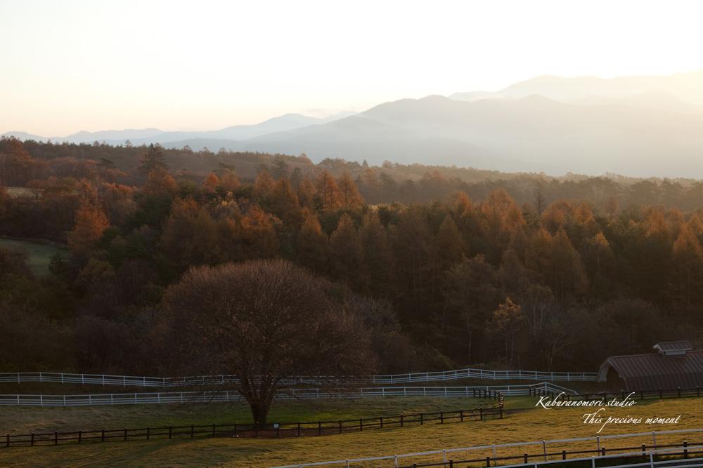 八ケ岳牧場公園からの朝焼け_c0137403_1634932.jpg