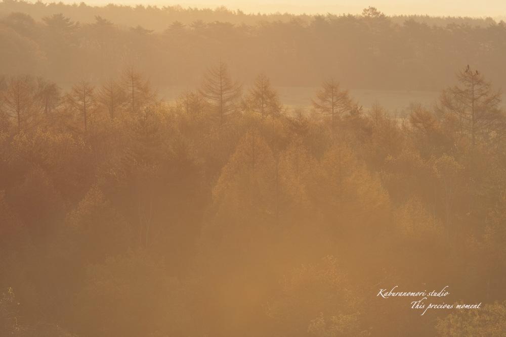 八ケ岳牧場公園からの朝焼け_c0137403_1636190.jpg