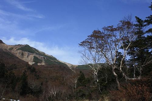 秋景色_f0007106_22243344.jpg