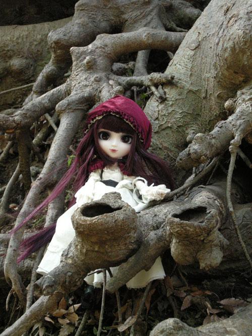 2011 創作人形科マスターコース 『お人形のためのデジカメ写真講座ー野外編ー』_b0107314_12395059.jpg