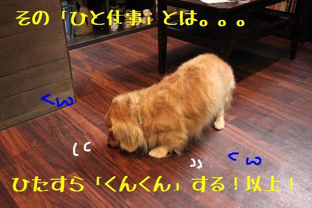 b0130018_9114728.jpg