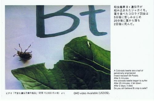 ゾンビ化したTPPが日本を壊滅させる_b0221143_2134853.jpg