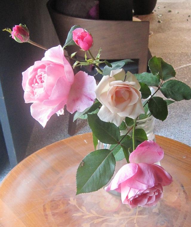 庭の薔薇が咲いた_d0177560_21502033.jpg
