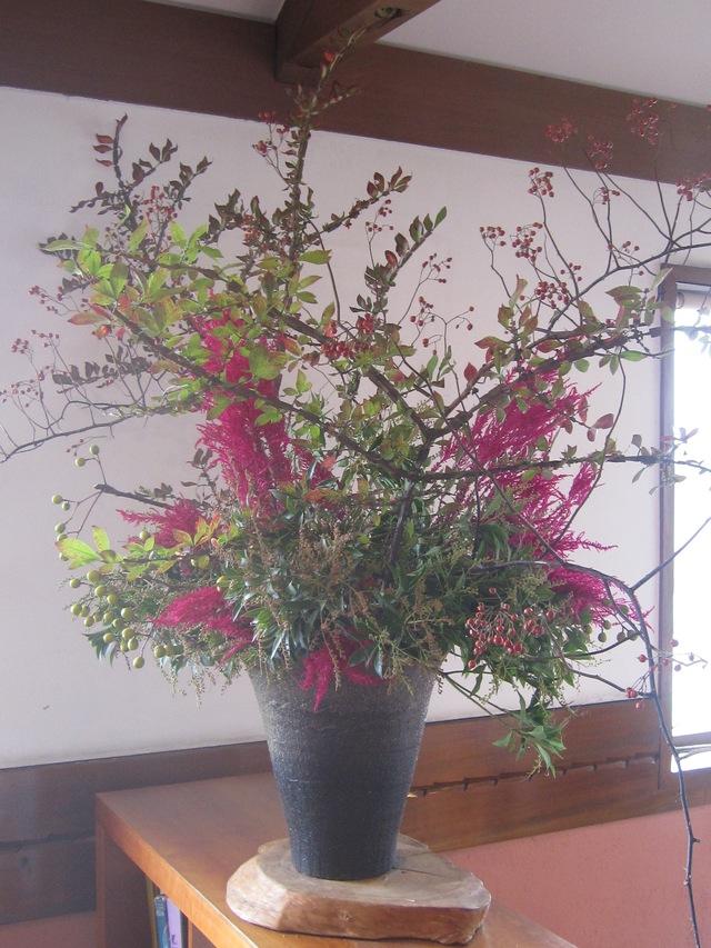 庭の薔薇が咲いた_d0177560_21513580.jpg