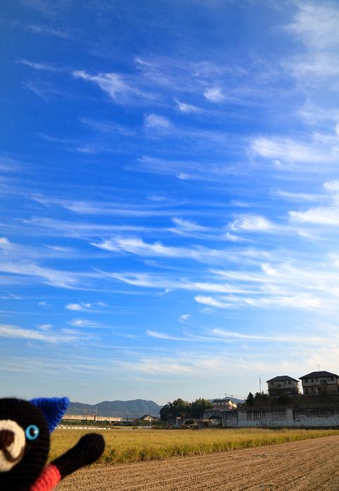 【11月4日】空_e0147669_2382526.jpg