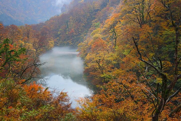 新潟 胎内渓谷の紅葉 その1_e0165983_18274944.jpg