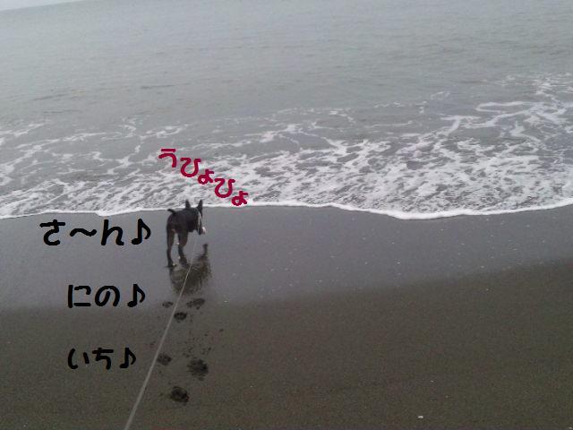 d0187891_16565525.jpg