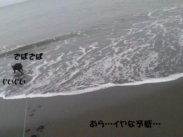 d0187891_1657472.jpg