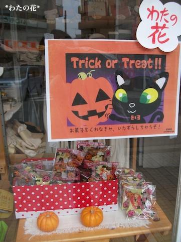 Trick or Treat☆_e0195403_20484597.jpg
